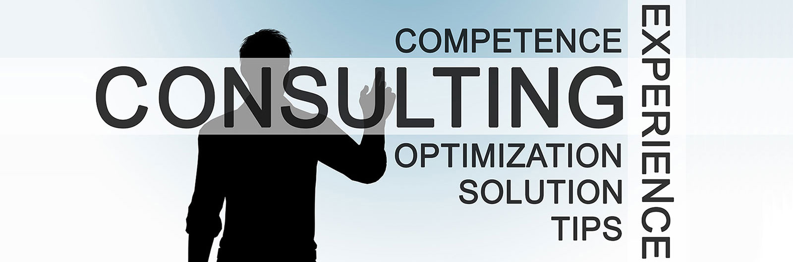 slide with a man with a silhouette and text about consulting experience.